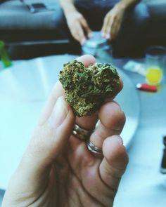 When Weed is love, And Love is weed.http://bit.ly/1ZhoNeS#MarijuanaFacts #CBD #cannabisedible #santabarbara  #MedicalMarijuana #MarijuanaMovement PotValetSantaBarbara #Marijuana #Cannabis #weedlove