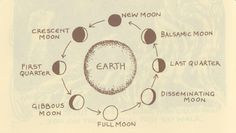 Kindred, G. (2002). The Earths cycle of celebration (4th ed.). Wirksworth: G. Kindred.