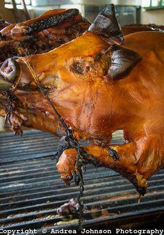 Kangkong (Ipomoea aquatica) Herbal Medicine