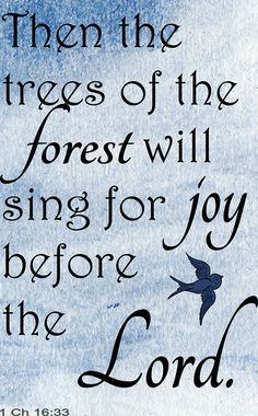 Joy before the Lord- 1 Chronicles 16:33