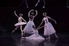Ballet gifs! Concept Photography, Dance Photography, Beyond Beauty, Falling Apart, Ballerinas, Dancers, Gymnastics, Ballet Dance, Bodies