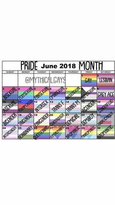 Lgbt Quotes, Lgbt Memes, Qoutes, Gay Aesthetic, Lgbt Community, Gay Pride, Pansexual Pride Day, Decir No, Pride Month Calendar