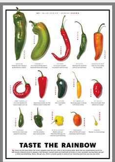 Sweet Banana Peppers, Stuffed Banana Peppers, Stuffed Sweet Peppers, Hot Pepper Chart, Types Of Peppers, Hot Sauce Recipes, Taste The Rainbow, Spice Blends, Desert Recipes