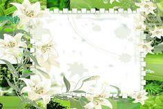 ramki-201_small.png (480×322)