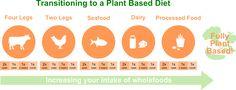 Plant Based Transition