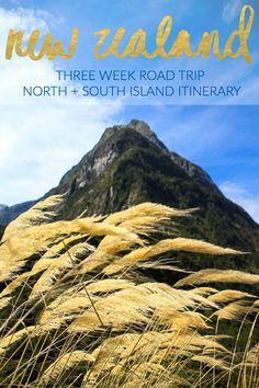 3 Week New Zealand Road Trip Itinerary // North & South Islands