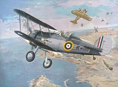 Amazon.com: Roden Gloster Sea Gladiator Mk.I. British Fighter ...