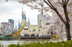 벚꽃축제 석촌호수 여의도 롯데타워 2017 #Cherry_Blossom Festival  봄기운이 만연하니 따듯한 시기입니다. 이제 벚꽃축제도 막바지 입니다. 서울의 벚꽃으로 유명한  #여의도 고수부지와 #석촌호수 주변의 벚꽃풍경, #롯데월드, #롯데타워 의 풍경입니다. 잠시 시간을 내어 벚꽃구경을 하시기 바랍니다..  #벚꽃 https://en.wikipedia.org/wiki/Cherry_blossom  전국 #벚꽃축제 http://m.blog.naver.com/choi603203/220231296860   #사상체질진단법 동영상 https://youtu.be/YEtaYUHSMvg  #체형교정건강법 동영상 https://youtu.be/ZJZ_y67GhrY  김수범박사의 #맛집 추천 http://www.iwooridul.com/sasang/recommendation-restaurants  김수범박사가 추천하는 #한국명소 의 #가볼만한곳…