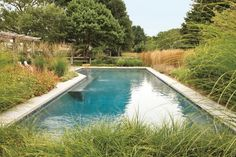 Amazing Swimming Pools, Cool Pools, Long Island, Outdoor Pool, Outdoor Spaces, Outdoor Decor, Landscape Architecture, Landscape Design, Portland Garden