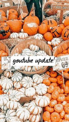 Carbonara Sauce, Bullet Journal Aesthetic, Youtubers, New Look, Aesthetics, Pumpkin, Fall, Autumn, Pumpkins