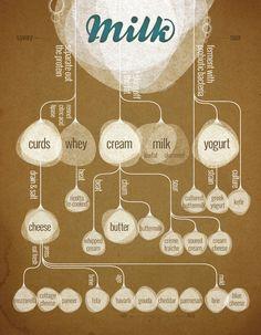 breakdown of milk
