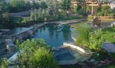 Naturalistic Pool and Hot Tub with Waterfalls