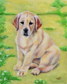 Yellow Labrador Retriever Puppy Art Print