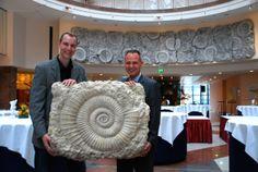 künstliches Ammonitenfeld von Jens-Uwe Scholz. Ausstellung aus dem Maritim Hotel am Flughafen Hannover.