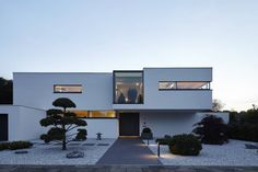 Villa S.: moderne Häuser von Lioba Schneider