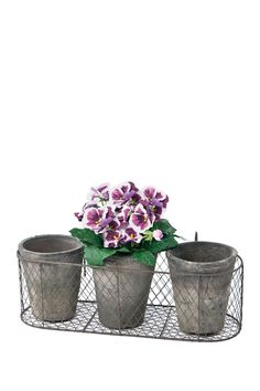 Natural/Grey Round Terracotta Pots in Wire Caddy by SKALNY on @nordstrom_rack