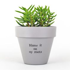 Planter Pot Indoor Planters Funny Gifts Grandma Gift Gifts | Etsy Herb Planters, Herb Pots, Indoor Planters, Succulent Pots, Succulents, Plant Pots, Potted Plants, Garden Plants, House Plants