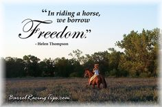 And happiness. Don't forget happiness and most horses ive ever road i gotta say this espcially my old brandy girl