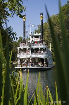 Dream #17 - How fun it would be to spend a week on a paddle wheeler!.  MISSISSIPPI.