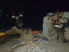 JORNAL O RESUMO: Polícia Ambiental apreende redes de pesca durante ...