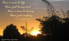 There's more to life than just living, and there's more to living than just existing. (-eve's little big thought-)