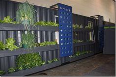 using the exterior of a shipping container as a vertical garden