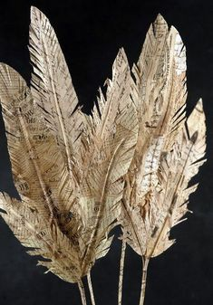 Paper Feather sizes) , Vintage Inspired Decor - Vintage Market And Design, Vintage Market And DesignDecorative feathers made from old book pages! (Source : Tales from OC Bottage: Scarendipity! My friend made me some fabulous paper feather! Old Book Crafts, Book Page Crafts, Book Page Art, Old Book Pages, Newspaper Crafts, Old Newspaper, Old Books, Barn Crafts, Newspaper Flowers