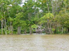 Marajó Island, Pará