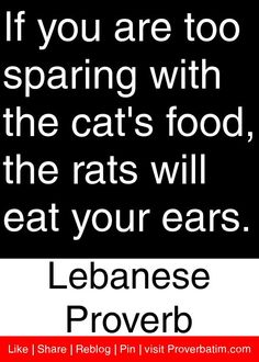 If you are too sparing with the cat's food, the rats will eat your ears. - Lebanese Proverb #proverbs #quotes