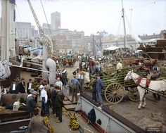Banana docks, New York, ca. 1890-1910.