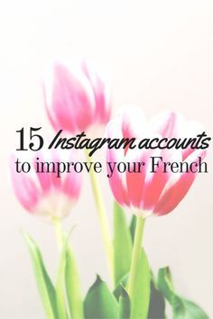 Learn French Videos Tips France Learn French Free, Learn French Online, How To Speak French, Spanish Lessons For Kids, French Lessons, Learning Spanish, French Teacher, Teaching French, Educational Websites