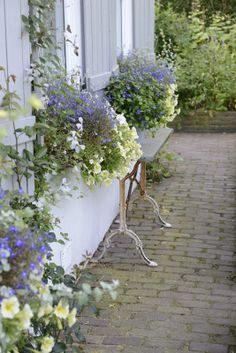 Window Boxes   With wrought iron table and stone top between.  Lovely!