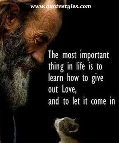 To let it come in- Love Quotes