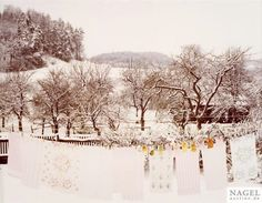 Artwork by Alfred Seiland, Winterlandschaft, Proleb, Österreich, 1981, Made of C print