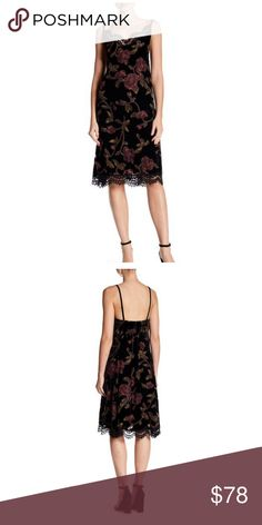 "Max Studio Spaghetti Strap Lace Trim Floral Dress Flaunt your arms and legs in this V-neck lace trim dress with floral print details and velvet construction.     - V-neck with lace trim details     - Sleeveless     - Spaghetti straps     - Allover floral print     - Lined     - Approx. 42"" length  Fiber Content     Shell: 50% nylon, 50% rayon     Lining: 100% polyester Care     Dry clean or hand wash cold Additional Info     Fit: this style fits true to size Max Studio Dresses"