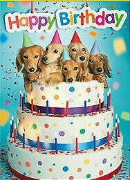 Birthday Happy Animals Wishes For Kids Card Sayings Best