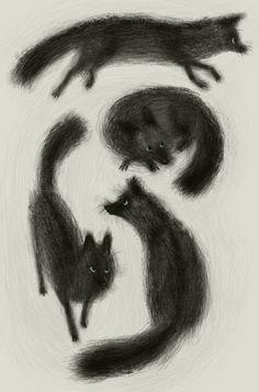 Meg Park, Black Foxes