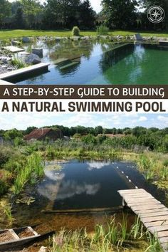 A Step-By-Step Guide to Building a Natural Swimming Pool - If you do not want to swim in chemicals which can actually harm you then this project is for you. Plus they look beautiful so why wouldn't you wan't one of these in your garden. Swimming Pool Pond, Natural Swimming Ponds, Natural Pond, Building A Swimming Pool, Natural Backyard Pools, Ponds Backyard, Piscine Diy, Living Pool, Diy Pond