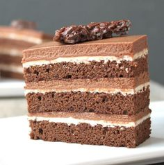 This chocolate hazelnut cake is comprised of a layers of chocolate sponge cake, praline mousse, and hazelnut ganache. It is a chocolate lover's dream! Praline Chocolate, Chocolate Hazelnut Cake, Chocolate Sponge Cake, Chocolate Crunch, Chocolate Lovers, Lemon Pepper Chicken, Beautiful Desserts, Sweet Treats, Dessert Recipes