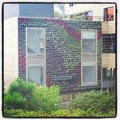 Muro Verde. Arqs Alejandra Yanet y Lau D' La Rosa. Jardineros ltda. Bogotá, Colombia.