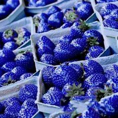 Morango azul (Raridade)