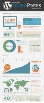 WordPress Stats info