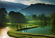 Taiping Lake Garden, 67 km from Ipoh. Established in the Taiping Lake Garden is one of the oldest gardens in Malaysia Taiping, World Photography, Photography Awards, Laos, Oh The Places You'll Go, Places To Visit, Beautiful World, Beautiful Places, Amazing Places