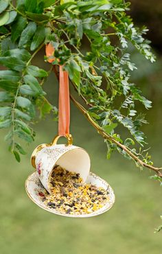 Homemade Bird Houses, Homemade Bird Feeders, Bird Houses Diy, Bird House Feeder, Diy Bird Feeder, Teapot Birdhouse, Diy Birdhouse, Birdhouses, Growing Vegetables In Containers