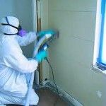 Nymoldpro provide best service for mold removal.