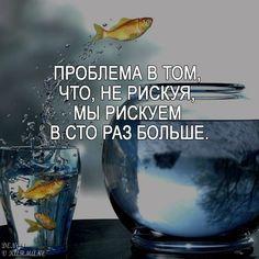 #мотивация #успех #деньги #цитата #афоризма #жизнь #саморазвитие #бизнес #мечта #счастье #мышление #цель