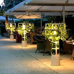 SOPHIE PLANTED - Designer General lighting from lasfera ✓ all information ✓ high-resolution images ✓ CADs ✓ catalogues ✓ contact information ✓. Green Terrace, Roof Ceiling, Plant Covers, Grow Lamps, Pergolas For Sale, Floor Plants, Pergola Attached To House, Roller Shades, Retractable Canopy