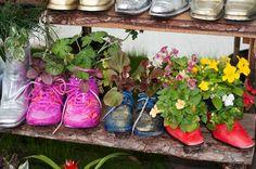Цветы в старой обуви фото