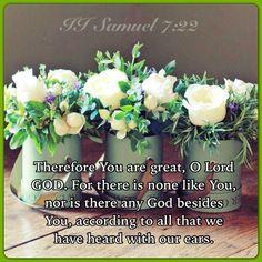 Colossians esv study bible