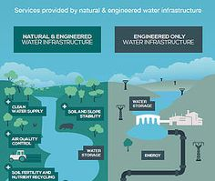 Detail of Infographic: Going with the Flow - working with nature - ©IUCN Water…